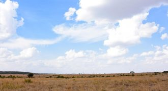 Commercial Plot for Sale in Kitengela
